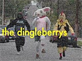 THE DINGLEBERRYS!